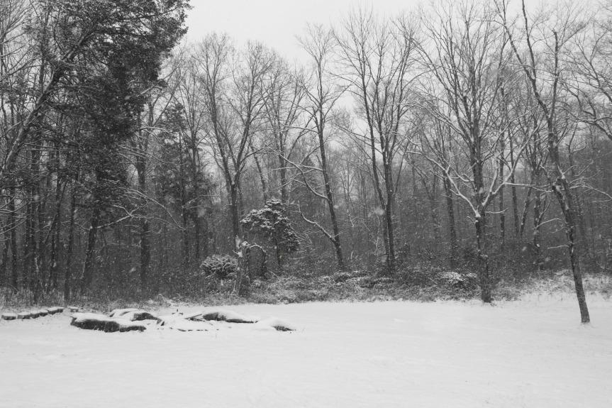snow-day7